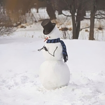 Pic #1 - Hilariously Creative Snowmen That Would Make Calvin And Hobbes Proud