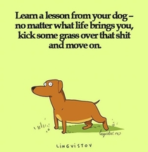 Pic #1 - Learn something from dog