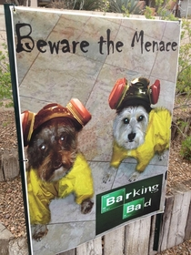 Pic #1 - My dad lives on a golf course Someone left him an anonymous note saying that his tiny and quiet dogs were a menace and that they were hostile to golfers then threatened to have it resolved My dad responded by putting this poster in his backyard t