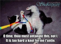 Pic #1 - Shakespeare lolcats