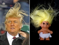 Pic #1 - Things Donald Trump looks like