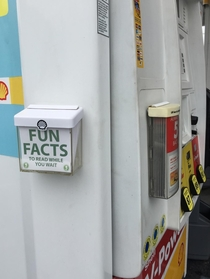 Pic #1 - This promotional box at a gas station I go to is always empty So I filled it with fun facts for people to read while they wait for their gas to pump