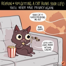 Pic #1 -  Ways Getting A Cat Ruins Your Life
