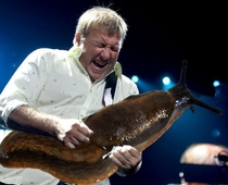 Pic #10 - Rockstars soloing with giant slugs explains the faces