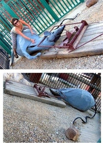 Pic #14 - Playgrounds scarring kids for life