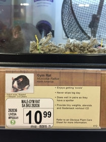 Pic #2 - I added some new pet options to a local pet store