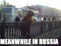 Pic #2 - Meanwhile in Russia an album