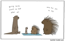 Pic #3 - Animal antics by Liz Climo