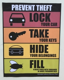 Pic #3 - I added some new anti-theft signs to a mall parking lot