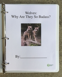 Pic #3 - I left this free biology report about wolves outside a Los Angeles high school