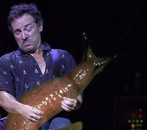 Pic #3 - Rockstars soloing with giant slugs explains the faces