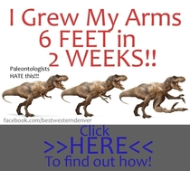 Pic #3 - T-Rex arm jokes are always short