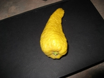Pic #3 - You call that the worst lemon ever I present you scumbag lemon with clit tickler companion