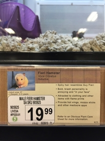 Pic #4 - I added some new pet options to a local pet store