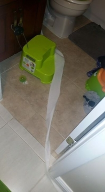Pic #4 - I asked my two year old to bring me the toilet paper from the other bathroom