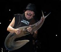 Pic #4 - The pained faces of guitarists are more justified whenever theyre holding giant slugs
