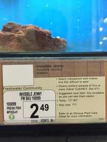 Pic #5 - I added some new pet options to a local pet store