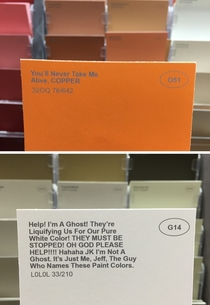 Pic #5 - I renamed some of the paint colors at the hardware store