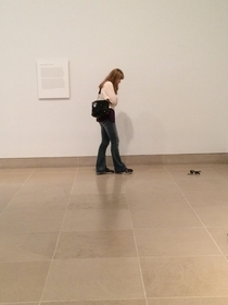 Pic #5 - my friend and i set his watch and sunglasses down in an abstract art exhibit at the DMA