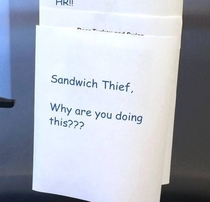 Pic #5 - Sandwich Thief