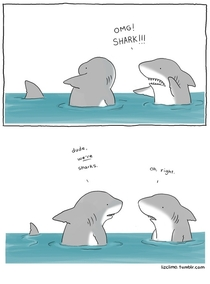 Pic #6 - Animal encounters guaranteed to cheer you up By Liz Climo
