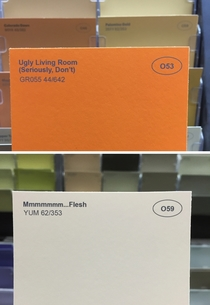 Pic #6 - I renamed some of the paint colors at the hardware store