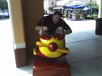 Pic #7 - Over the past few years I have been cramming myself into small childrens rides at the mall