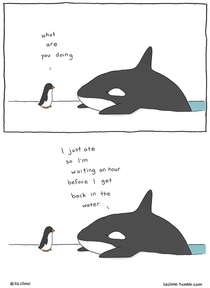 Pic #8 - Animal encounters guaranteed to cheer you up By Liz Climo