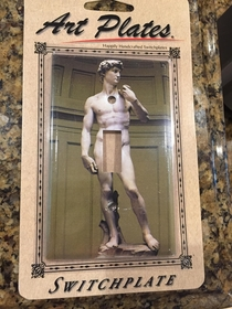 Picked up this little number at a museum gift shop yesterday Have a buddys housewarming coming up and plan on sneaking off to install it in the guest bathroom