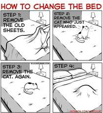 Please note Similar steps must be taken for folding laundry