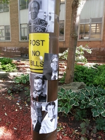 Post no bills saw this all over my campus