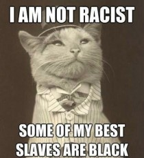Racist Kitty