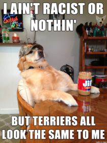 Racist Retriever