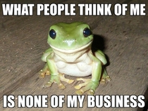 Realizing this has improved my outlook tremendously Can we have Self-Affirmation Frog