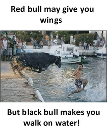 Red Bull may give you wings but Black Bull will make you walk on water