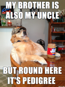 Redneck Retriever Family
