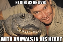 Remembering the beloved Steve Irwin