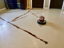 robot vacuum and dog poop doesnt mix