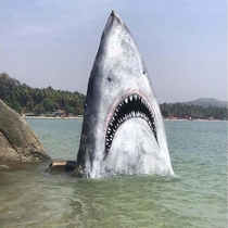 Rock painted as a shark