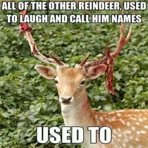 Rudolph the Reindeer just couldnt take the bullying anymore
