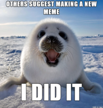 Saw this pic on another sub and knew it needed to become a meme I give you Seal of Approval