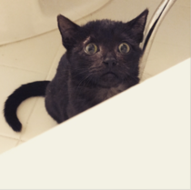 She thinks Im drowning every time I take a bath