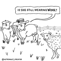 Sheep fashion