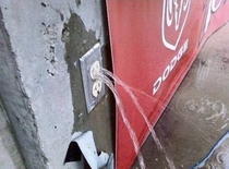 Should I call a plumber or an electrician