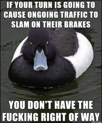 Sick of almost being killed while passing through a green light
