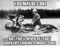 Since Reddit is Teddy Roosevelt themed-today