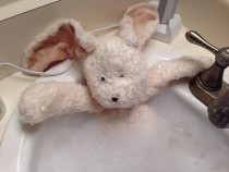 Single dad daughter asked me to give her stuffed bunny a bath Shes at her moms so I sent her this
