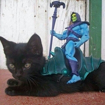 Skeletor has taken over the Battle Cat