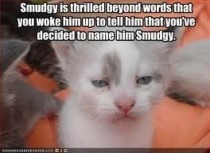 Smudgy is thrilled beyond words