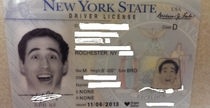 So I got my new drivers license PSA New York DMV has apparently stopped caring